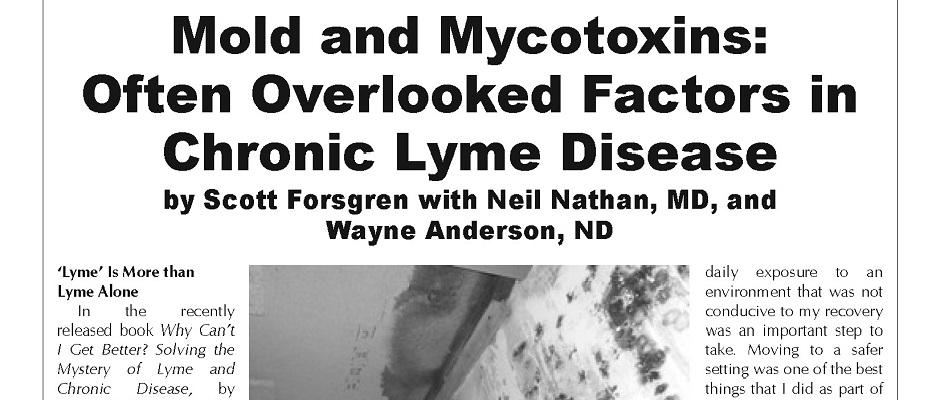Mold and Mycotoxins: Often Overlooked Factors in Chronic Lyme Disease